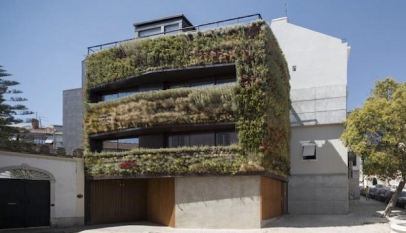 Casa jardín Lisboa